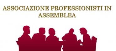 L'ASSOCIAZIONE PROFESSIONISTI IN ASSEMBLEA